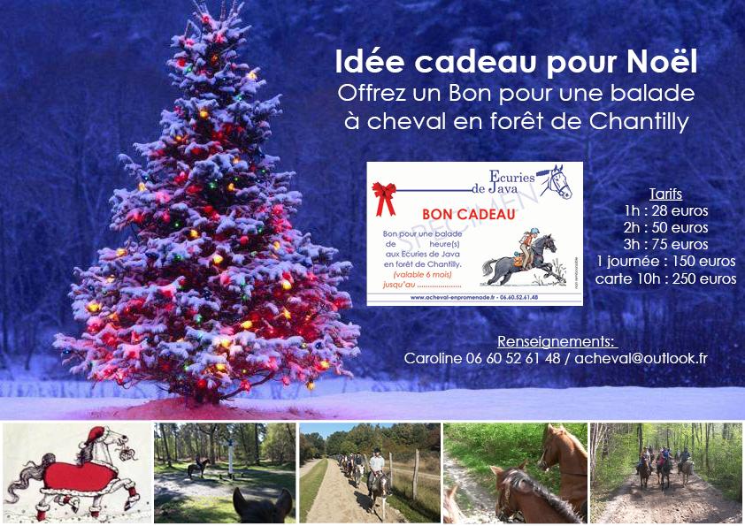 Idée De Cadeau Pour Noël.Idée Cadeau Pour Noël A Cheval En Promenade